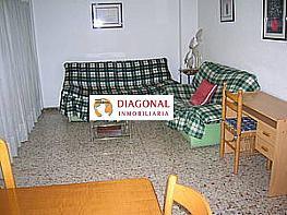 Foto - Piso en alquiler en calle Sector Quinto, Sector V en Elche/Elx - 336439462