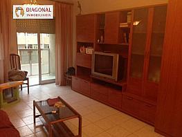 Foto - Piso en alquiler en calle Altabix, Altabix en Elche/Elx - 337549459