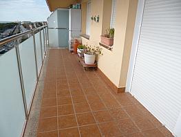 Balcón - Piso en venta en paseo Maritimo, Santa Susanna - 263944299