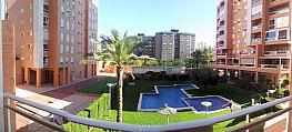 Foto - Piso en alquiler en Campanar en Valencia - 353037447