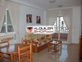 Foto - Apartamento en alquiler en Guardamar del Segura - 381736918