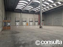 Planta baja - Nave industrial en alquiler en calle Zal, La Marina de Port en Barcelona - 361132915