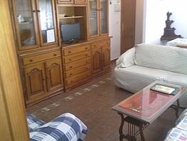 Piso en alquiler en calle Paez de Rivera, Reina Mercedes en Sevilla - 337984581