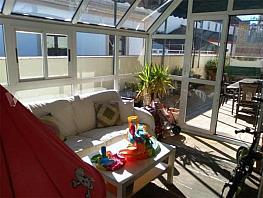 Terraza - Ático en alquiler en calle San Román, San Julián en Sevilla - 364633597