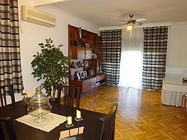 Salón - Piso en alquiler en calle El Tato, San Pablo en Sevilla - 382836760