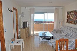 Apartamento en alquiler en calle Concha Espina, Dehesa de Campoamor - 379492238