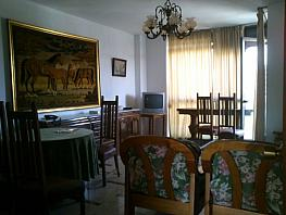 Wohnung in miete in calle Bami Pineda, Bami in Sevilla - 304410746