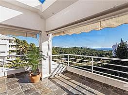 Pis en venda Ponent a Palma de Mallorca - 237874917