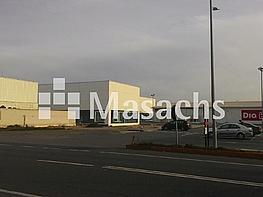 Ref. 7497 carrion - Nave industrial en alquiler en Ciudad Real - 263777967