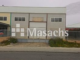 Ref. 7561 tomelloso - Nave industrial en alquiler en Ciudad Real - 269666852