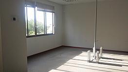 Oficina en alquiler en calle Pablo Rada, Zona Centro en Huelva - 326240103
