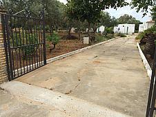 Vistas - Finca rústica en venta en calle La Calvilla, Gibraleón - 138695036