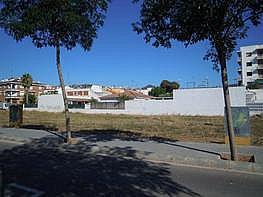 Terreny en venda carrer Girona, Pineda de Mar - 226135278