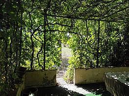 Imagen del inmueble - Masía en venta en calle Palau de Reig de Dalt, Valls - 226008959