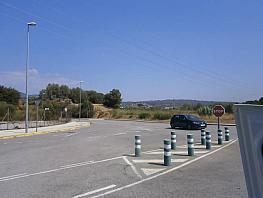 Foto - Nave industrial en alquiler en Sant Esteve Sesrovires - 323696635