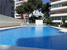 Estudio en alquiler en Puerto Marina en Benalmádena - 307738426