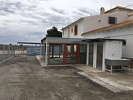 Foto - Casa en alquiler en calle Raspeig, Inmediaciones en San Vicente del Raspeig/Sant Vicent del Raspeig - 278276546