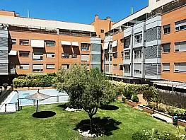 Zonas comunes - Piso en alquiler en calle Pirra, Canillejas en Madrid - 286294665