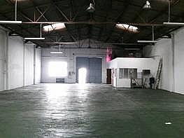 Foto - Nave industrial en venta en calle Brasilia, Carretera de Cádiz en Málaga - 232024726