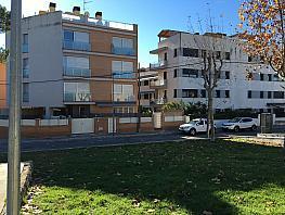 Wohnung in miete in calle Cerca Servicios, Can toni in Cunit - 362810407