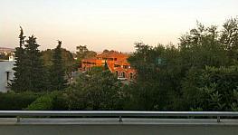 Foto 12 - Apartamento en alquiler en Sotogrande - 336050435