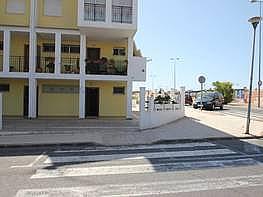 Baix en venda calle Eliseos Playa, Torrevieja - 298368068