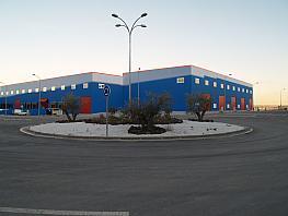 Nave industrial en alquiler en calle Amapola, Borox - 323035174