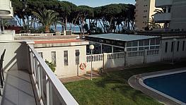 Terraza - Piso en venta en calle Pau Casals, Pineda, La - 286543352