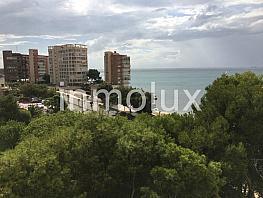 777525 - Piso en venta en Albufereta en Alicante/Alacant - 375908582