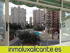 Estudios Alicante/Alacant, Albufereta