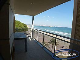 Terraza - Piso en venta en paseo Pau Casals, Pineda, La - 282358827