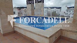 20150204_120059 - Piso en venta en calle Gabriel Roca, El Jonquet en Palma de Mallorca - 261265160