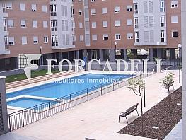 Imgp0414 - Piso en alquiler en calle Montesinos, Garbinet en Alicante/Alacant - 376956313
