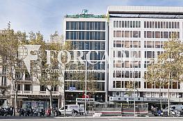_dsc3467 - Oficina en alquiler en calle Gracia, Eixample dreta en Barcelona - 362226533
