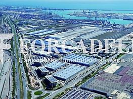 8c7bbbba95c1025975e548cee86dfadc - Oficina en alquiler en calle , La Marina del Prat Vermell en Barcelona - 282037615