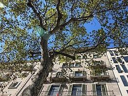 Img_5595 - Oficina en alquiler en calle De Gràcia, Eixample dreta en Barcelona - 316896822