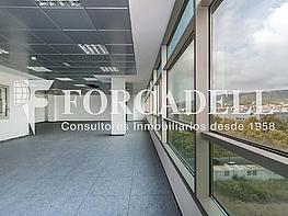 _dsc7916 - Oficina en alquiler en calle De Can Rabadà, Castelldefels - 263432670