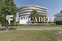 _dsc8055 - Oficina en alquiler en calle De Can Rabadà, Castelldefels - 263433870