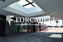 2011-06-15 10.51.36 - Oficina en alquiler en calle Constitució, Sant Just Desvern - 263446185