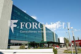 Beta-disc_r3090_n0164 - Oficina en alquiler en calle Eol, Prat de Llobregat, El - 263452131