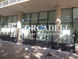Img_3706 - Local comercial en alquiler en Santa Eulàlia en Hospitalet de Llobregat, L´ - 261860014