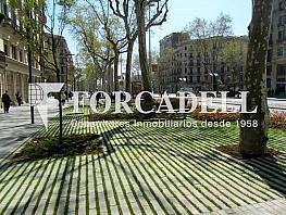 Fb9de961 - Local comercial en alquiler en Eixample dreta en Barcelona - 261862837
