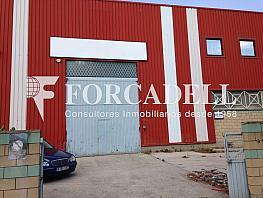 Img_0436 - Nave industrial en alquiler en calle Cerdanya, Canyet-Pomar en Badalona - 269871382
