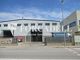 Img_1557 - Nave industrial en alquiler en calle Del Riu Mogent, Llinars del Valles - 290423064