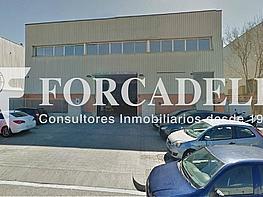Captura - Nave industrial en alquiler en calle Botanica, Gran Via LH en Hospitalet de Llobregat, L´ - 379518092