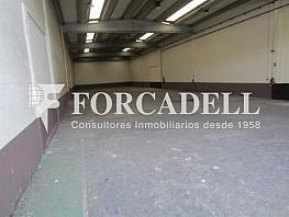 Img_2648 - Nave industrial en alquiler en calle Can Mitjans, Cerdanyola del Vallès - 266471850