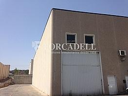 Img_2395 - Nave industrial en alquiler en calle Isaac Peral, Sant Andreu de la Barca - 266471196