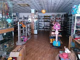 Local comercial en alquiler en Roquetas de Mar - 309887937