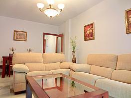 Piso en alquiler en calle Centenario, Barrio Bajo en Sanlúcar de Barrameda - 352185612