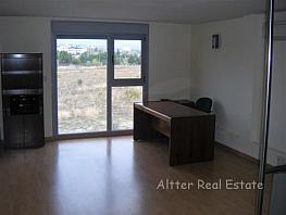 Oficina en alquiler en El Pinar-Punta Galea en Rozas de Madrid (Las) - 351658008